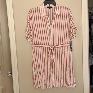 Brand New Ivy and Cream Stripe Dress!